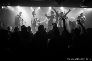 akgphotos-armstrong-king-tuts-21-january-2016-16