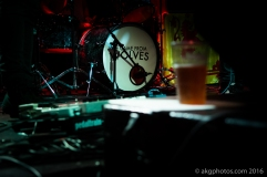 akgphotos-we-came-from-wolves-audio-23-june-2016-13